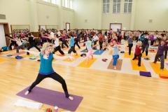 Yogatag 2014-4058