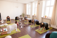 leipziger_yogawochenende_2015_jasmin_zwick-1974