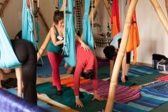 Yogatag 2014-4190