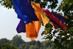 Sommerfest2014web_10