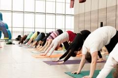 yoga_im_museum_der_bildenden_künste_jasmin_zwick_2015_02_22-0689