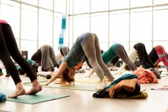 yoga_im_museum_der_bildenden_künste_jasmin_zwick_2015_02_22-0698